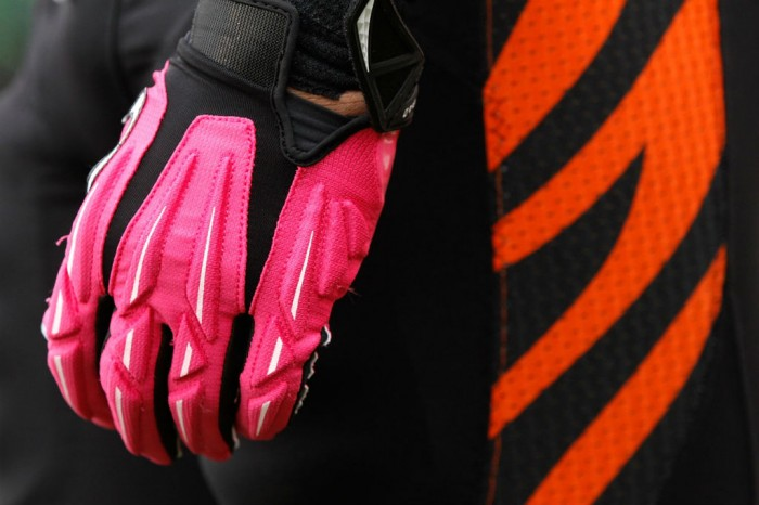 Michael Johnson wearing Nike Superbad 2.0 Padded Receiver Gloves Pink