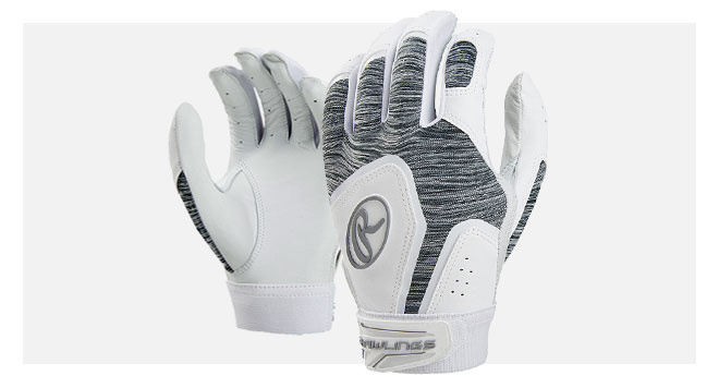 2018 Rawlings Gloves